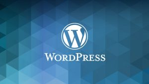 Why I Should Update WordPress Plugins and Themes